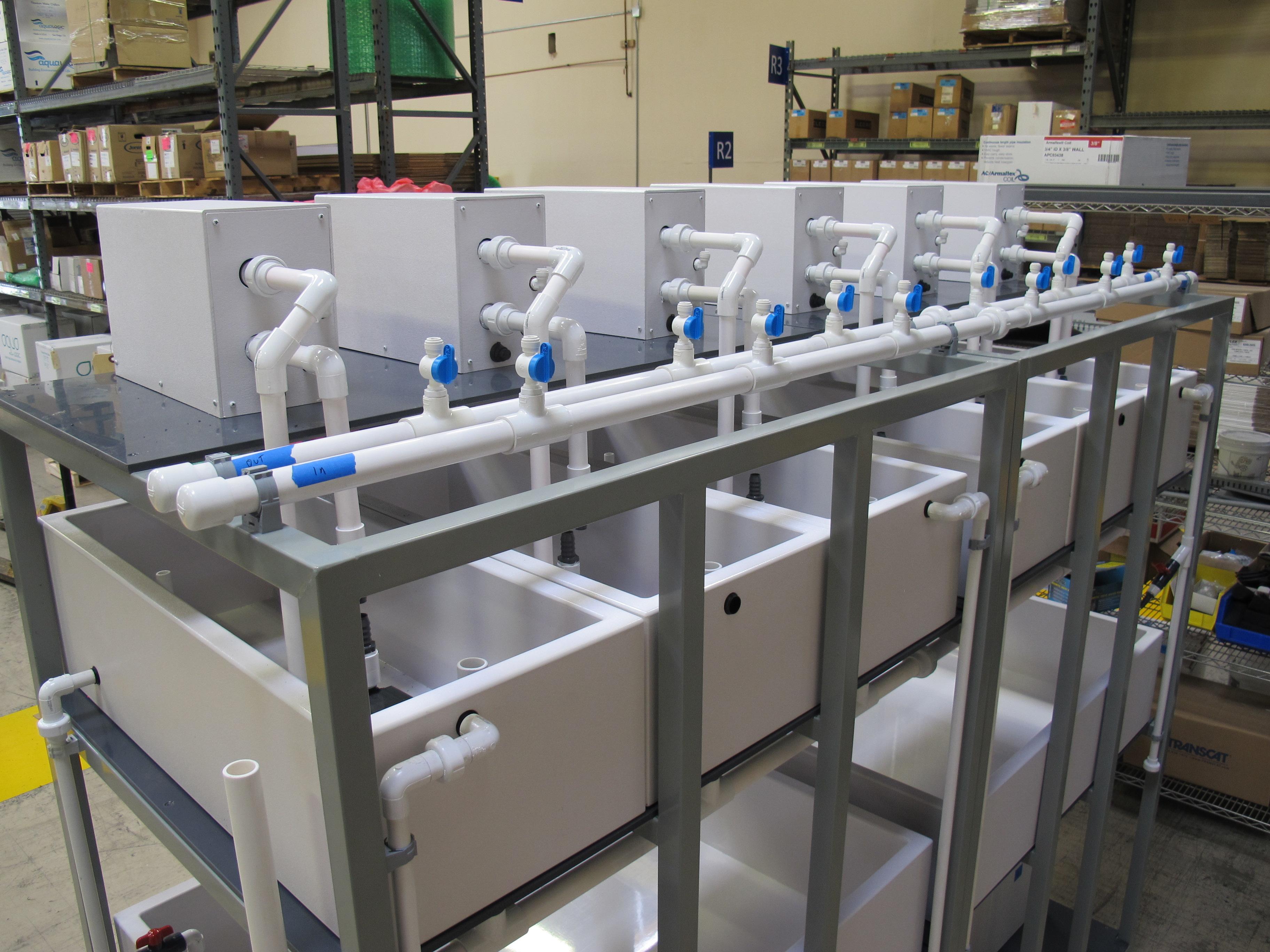 Aquatic Tank Systems – Custom Marine Environments