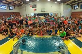 Newport-Aquarium-1